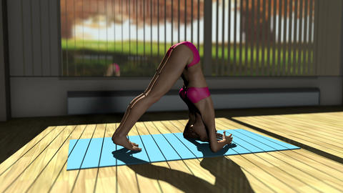 Dolphin Yoga Pose in Yoga studio 3D Animation Animation