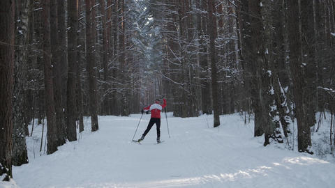 Man Skiing Alone in Nature GIF