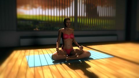 Meditation v2 Yoga Pose in Yoga studio 3D Animation Animation