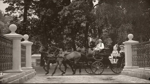 A man and a woman of the old age return home on a carriage Footage