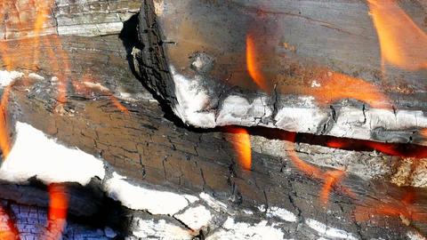 Firewood Burning Macro Live Action