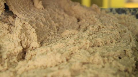 Dough for production of gingerbread and biscuits Live Action