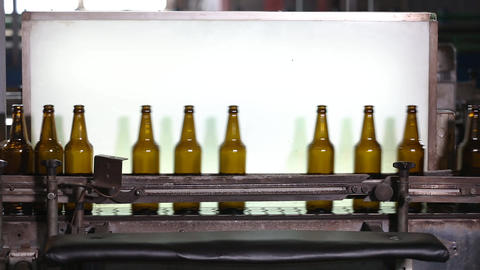 Clean bottles are moving along the conveyor Footage