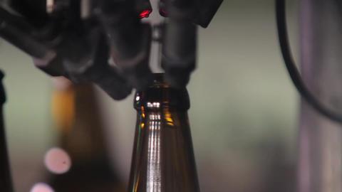 Sorting beer bottles Footage
