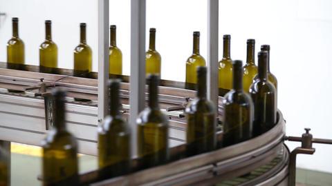 Wine bottles moving along a conveyor belt Live Action