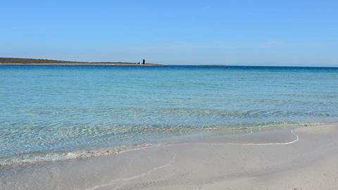 Turquoise water seen from the ground in La Pelosa beach, Stintino. Sardinia, Ita Footage