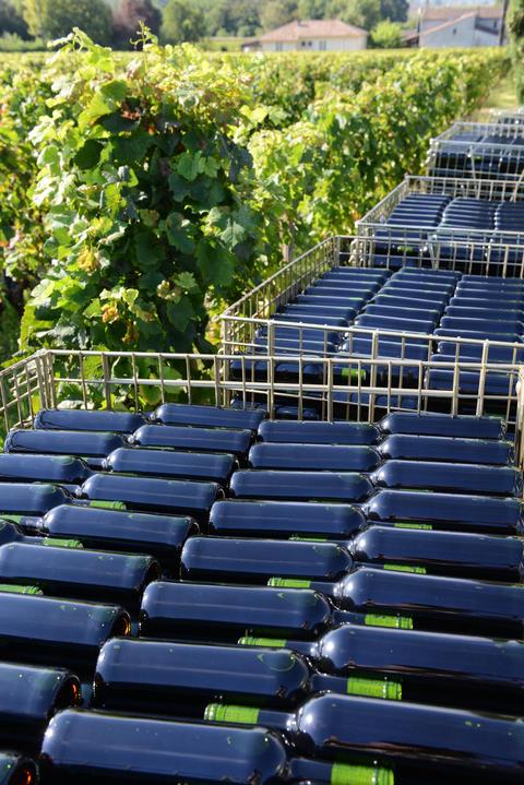 The bottling of wine in wineyard-Storage of wine bottles outdoor Photo
