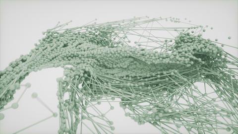 Network data flow / molecular behavior Live Action