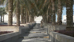 Arab man going up on stairs between palm trees in middle east 영상물