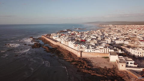 Aerial view of seagulls over Essaouira old city Footage