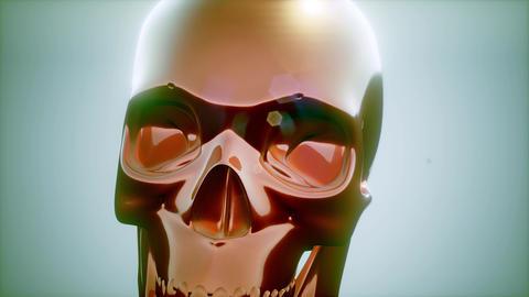 Metall Skull Rotate Footage