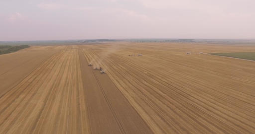 Combines Harvest Leaving One by One Footage