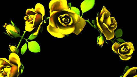 Yellow Roses Frame On Black Text Space CG動画