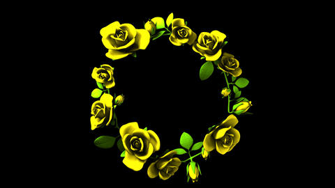 Yellow Roses Frame On Black Text Space Animación