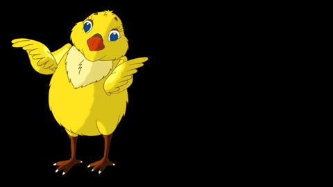 Yellow Chicken Looking for Food Alpha Matte Animation