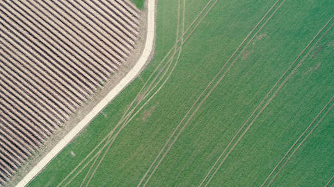Agricultural area - aerial view Footage