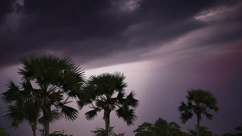 Lightning in storm clouds over the jungle Footage