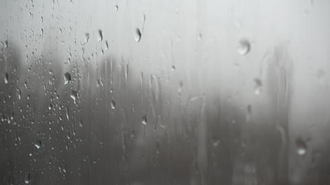 Rain Drops On The Window Background Footage