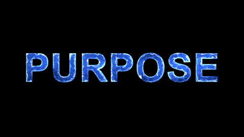 Blue lights form luminous text PURPOSE. Appear, then disappear. Electric style Animation