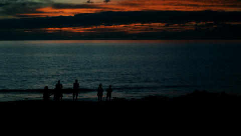 Silhouetted people admiring a Maui beach Footage