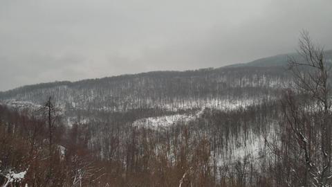 Beautiful winter landscape Footage