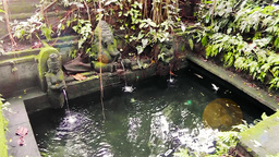 Authentic fountain is in Ubud Monkey Forest,Bali Videos de Stock