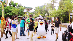 Madagascar characters are in Universal Studios Singapore Videos de Stock