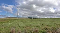 Wind Turbines in a field in Scotland Footage