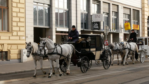Horse-drawn carriages carrying tourists around, Vienna Austria Footage