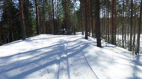 Cross country ski track on ridge in Nordic forest Archivo
