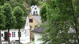 Norway Old Bergen historic Norwegian village between green trees Footage