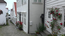 Norway Bergen Skuteviken white wooden house wall with roses Footage
