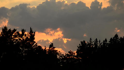 Time lapse of clouds at sunset in sky over tree silhouettes Footage