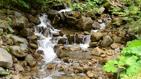 Beautiful waterscape with a fast stony mountain river in summer Footage