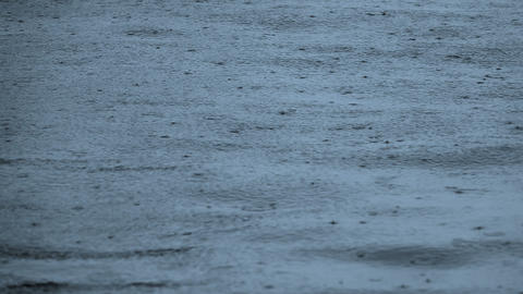 Background with Raindrops on the Sea Surface. Slow Motion Footage