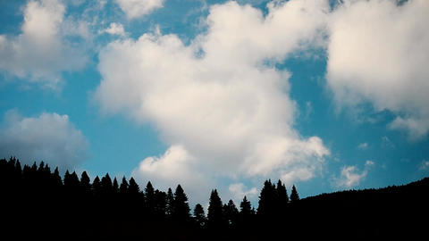 Clouds move above fir tree silhouettes in mountains Footage