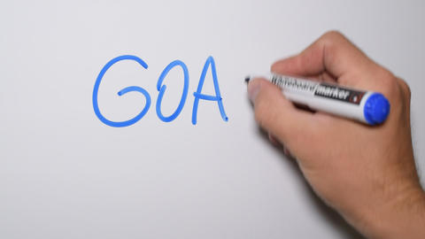 Hand writing the word GOALS on whiteboard Footage