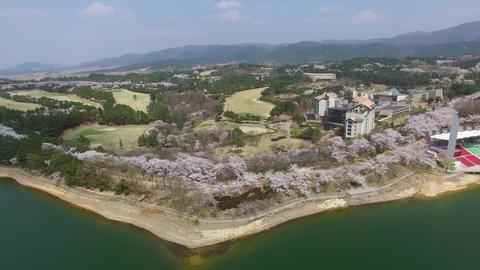 Hot Air Ballon at Bomun Park at Gyeongju 07 Footage