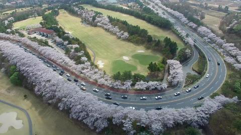 Hot Air Ballon at Bomun Park at Gyeongju 11 Footage