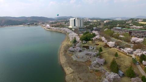 Hot Air Ballon at Bomun Park at Gyeongju 12 Footage