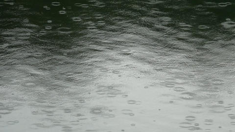 Raindrops on the water surface Footage