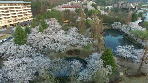 Bomun Pond of Bomun Park at Gyeongju 10 Footage