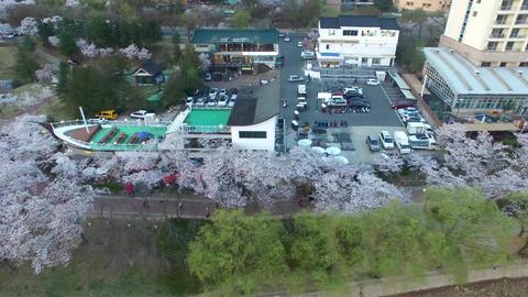 Spring of Bomun Park at Gyeongju 02 Footage