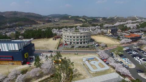 Spring of Bomun Park at Gyeongju 04 Footage
