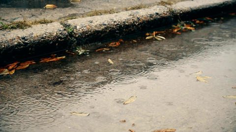 Rain in autumn. Raindrops fall on a concrete pavement with water and fallen Footage