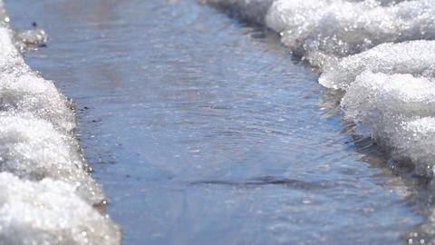 Spring creek flowing through the asphalt Footage