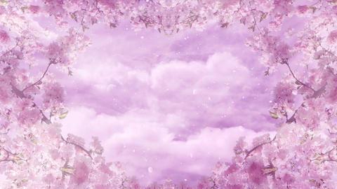 Sakura Background Loop Animation