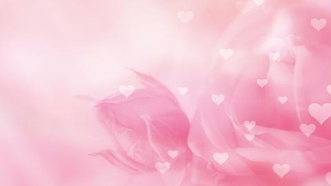 Romantic Background Loop Stock Video Footage