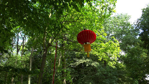 Chinese lantern in a green park. 4K Live Action