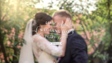 Happy Wedding Plantilla de After Effects